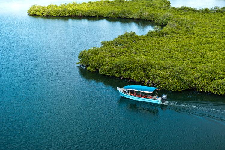 Bocas Tour Boat to Bastimentos.jpg