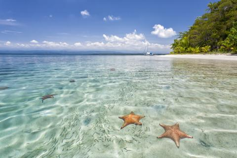 Bocas-del-toro-starfish-beach-Landscape-Photography-Marrero-2.jpg