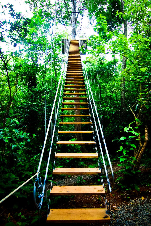 Bastimentos Sky stairs.jpg