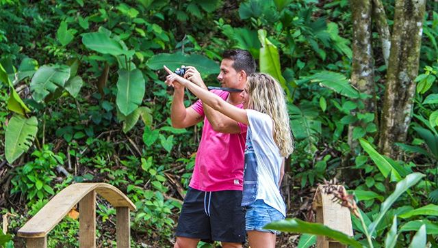 It's a beautiful day to join our nature hike tour through the tropical forest! 🌴🌺📷 #islandactivities #adventuretravel #caribbean #island #redfrogbeachresort #redfrogbeach #islandlife #islandtravel #nature #wildlife