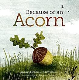 because of an acorn.jpg