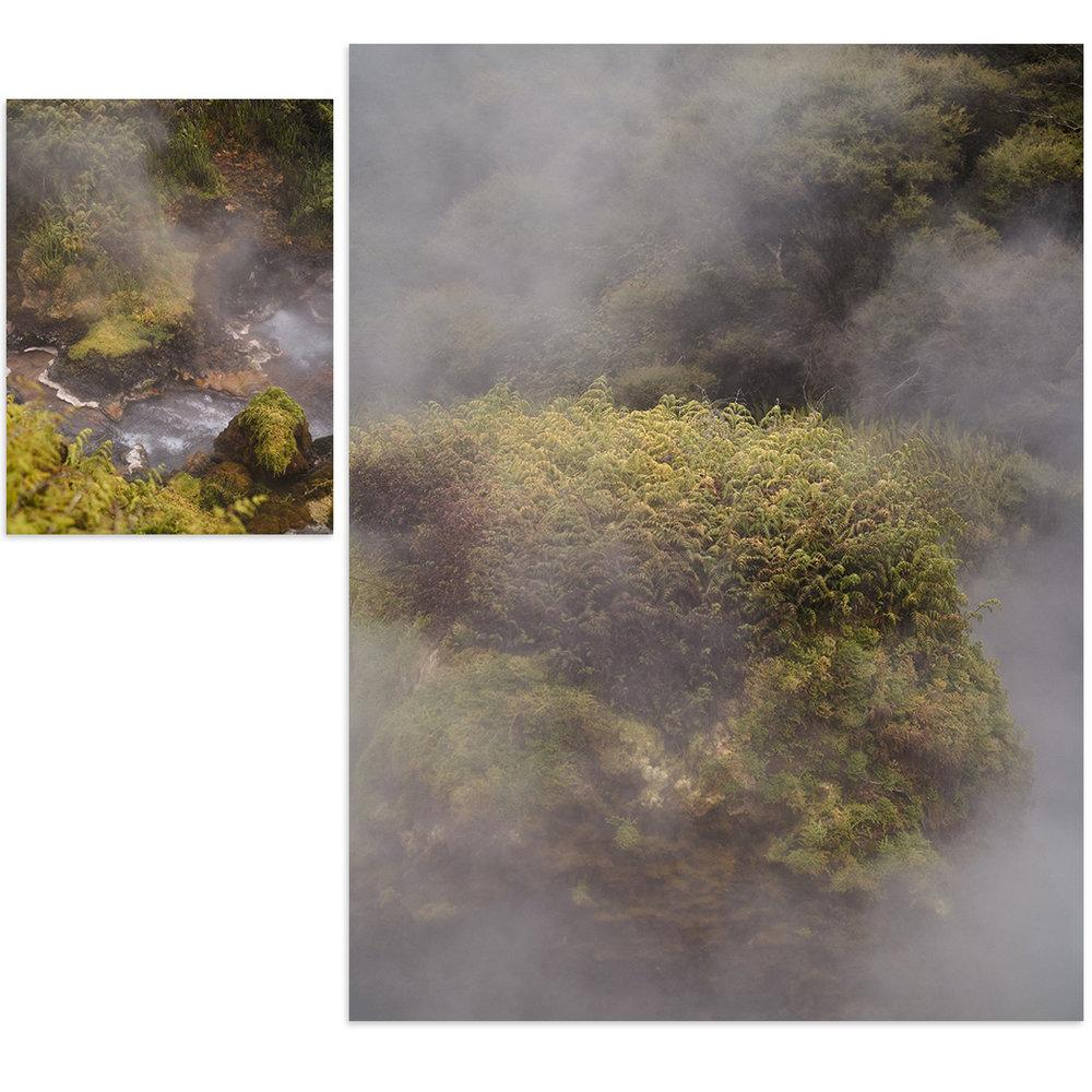 Scott-Hardy-Rotorua-1.jpg