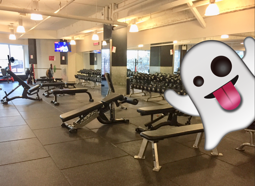 - Local gym empty.Party.Something something.Insert joke.Fuck this.Don't talk to me until Wednesday.