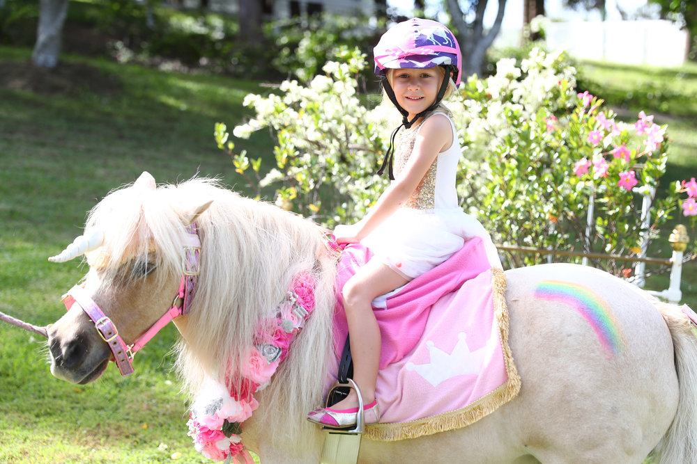 UNICORN PONY RIDES $300/hour - Make dreams come true by inviting a real-life unicorn to your celebration! This option includes one hour of hand-guided unicorn rides and photo opportunities. Prince Barney (pictured) from Pony Parties Gold Coast Tweed available on request, with cost including glitter name on unicorn, gift for birthday child, and $5 donation to local horse rescue charity, Project Ponies.