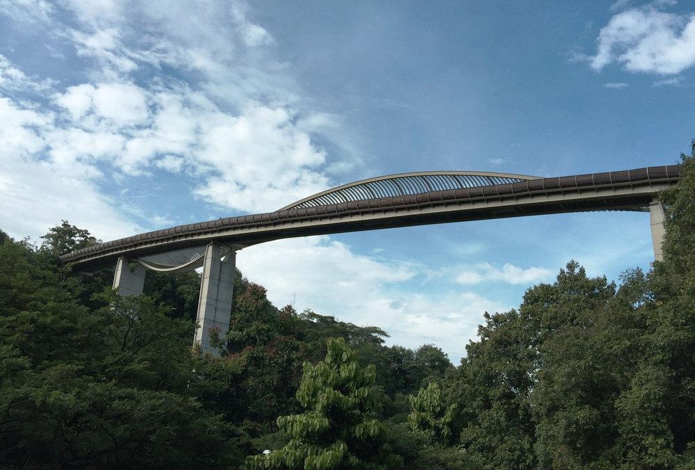Henderson Wave Bridge