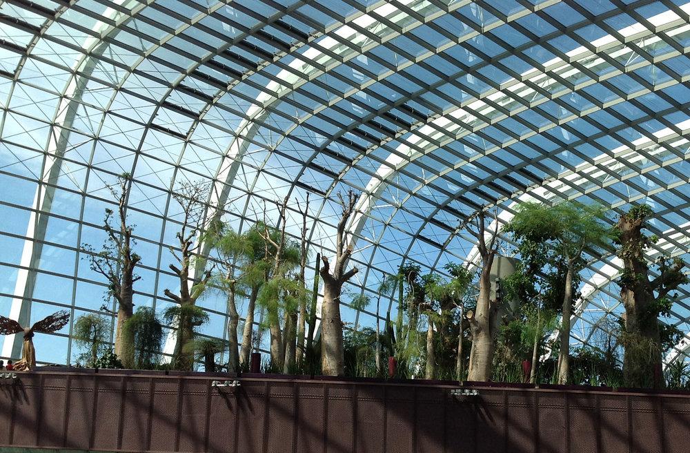 Flower Dome2.jpg