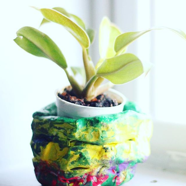 This project is a great way to bring some extra life into the classroom! Little ones used air dry clay to make pots, painted with acrylics, added glaze and then added these micro pots! Moms love taking this one home too! . . . #clay #airdryclay #pinchpot #coilpot #greenthumb #artteacher #preschoolteacher #prek #prekteacher #brookfieldwi #brookfieldcenterforthearts