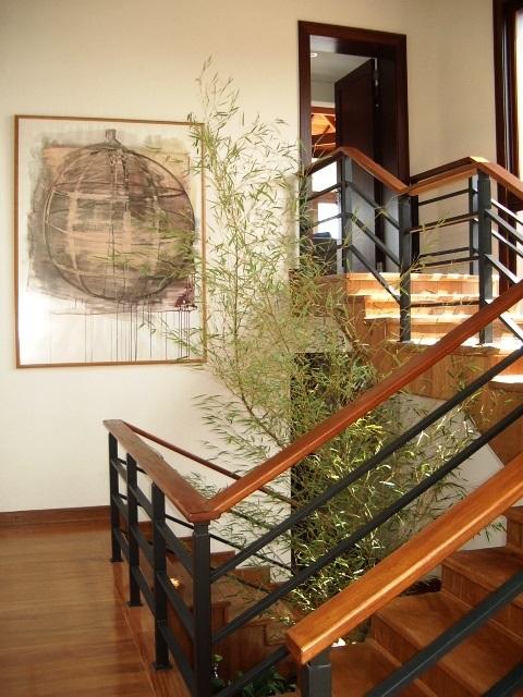 SS_escada 1.jpg