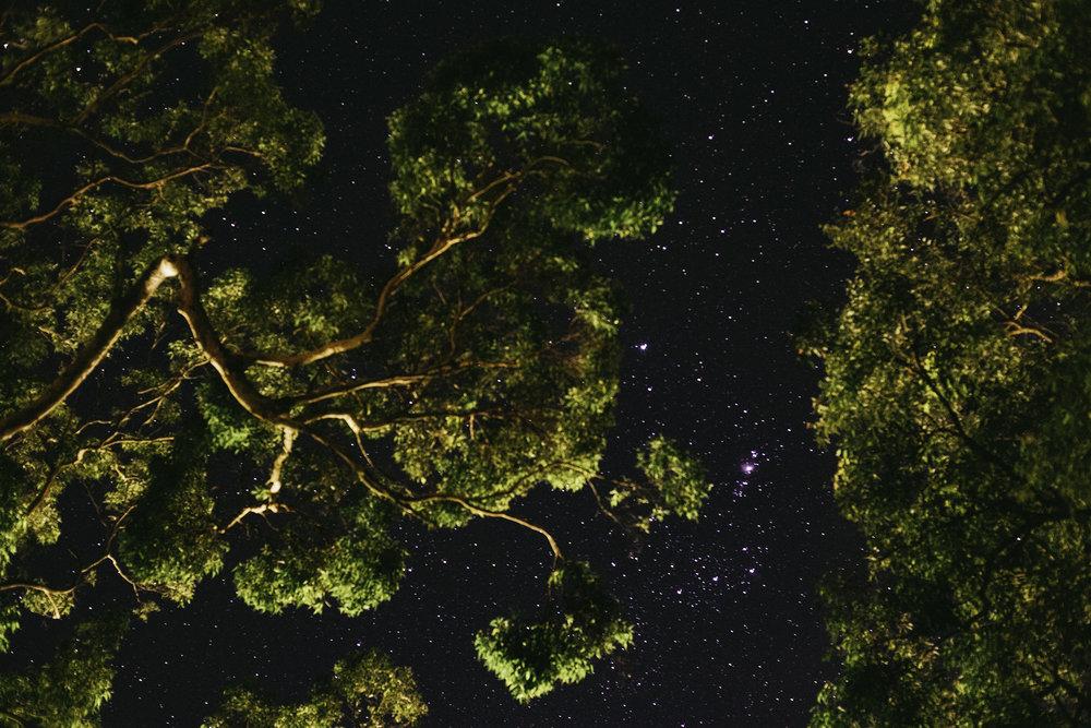 night+sky+3.jpg