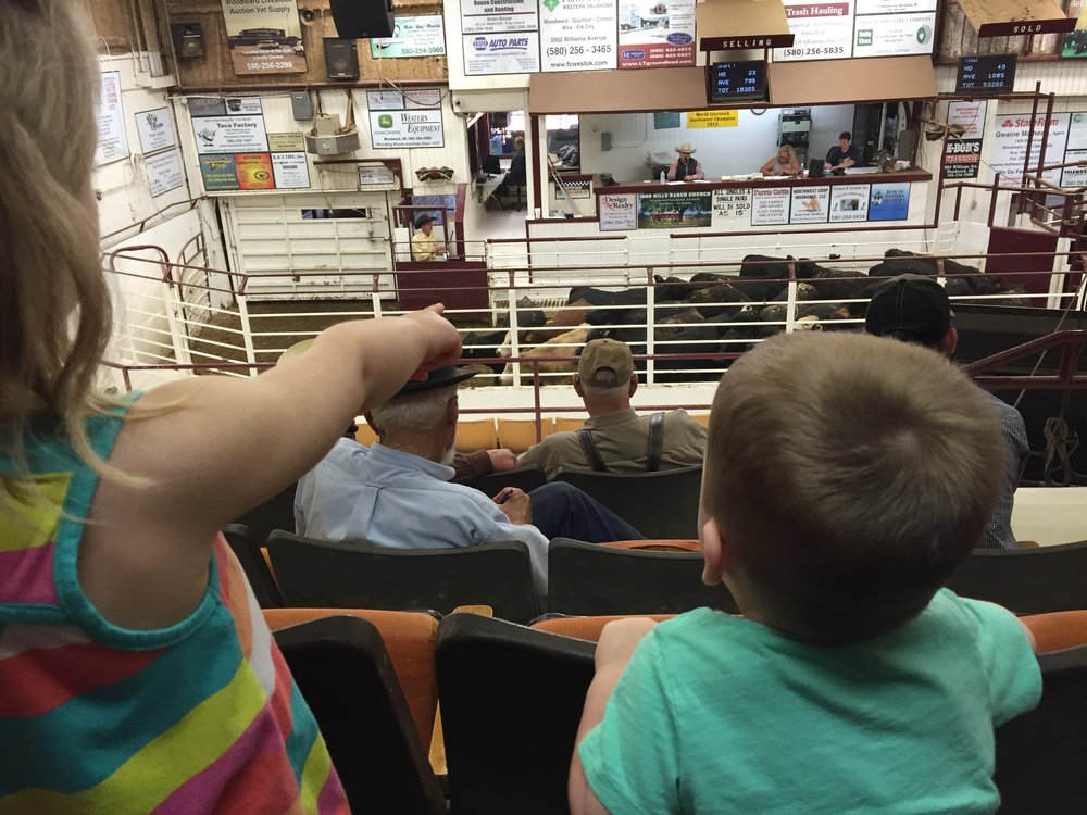 This photo was taken about 3 years ago when my daughter was three and my son was one. It was one of the family first trips to the auction barn. Little guy was mesmerized by the auctioneer. Those are not our cattle in the ring, but I still love this photo.