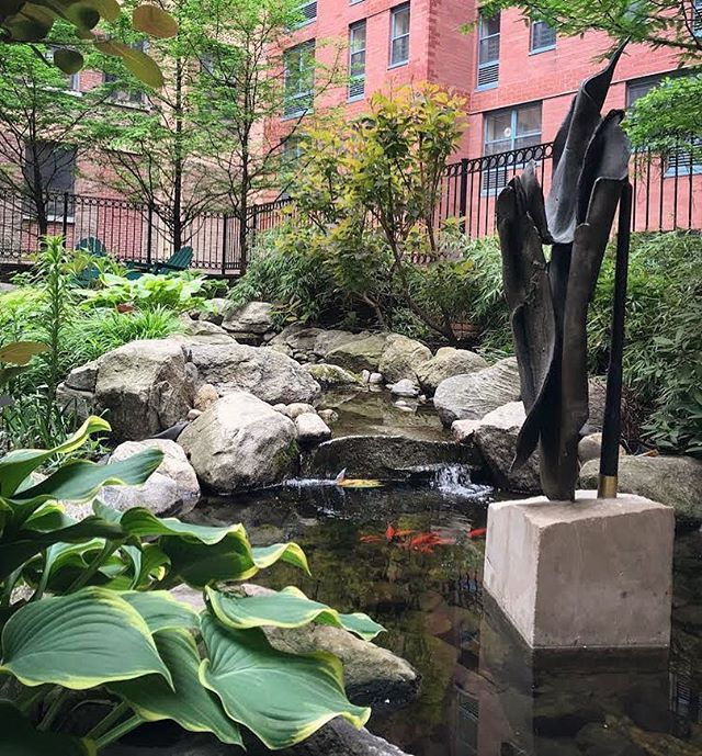A babbling brook with koi and a dawn redwood grove in the middle of Manhattan? Yes please! Throw in some garden art, a carpet of shade-loving perennials, and ample seating throughout. This garden, in the courtyard of an affordable housing building in Hell's Kitchen, is the work of our heroes at @designwildny  #gardensofnewyork #shadegarden #designwild #urbangarden #urbanwetland #urbanstream #dawnredwood #metasequoia #hosta #koi #gardenart #affordablehousing #courtyardgarden