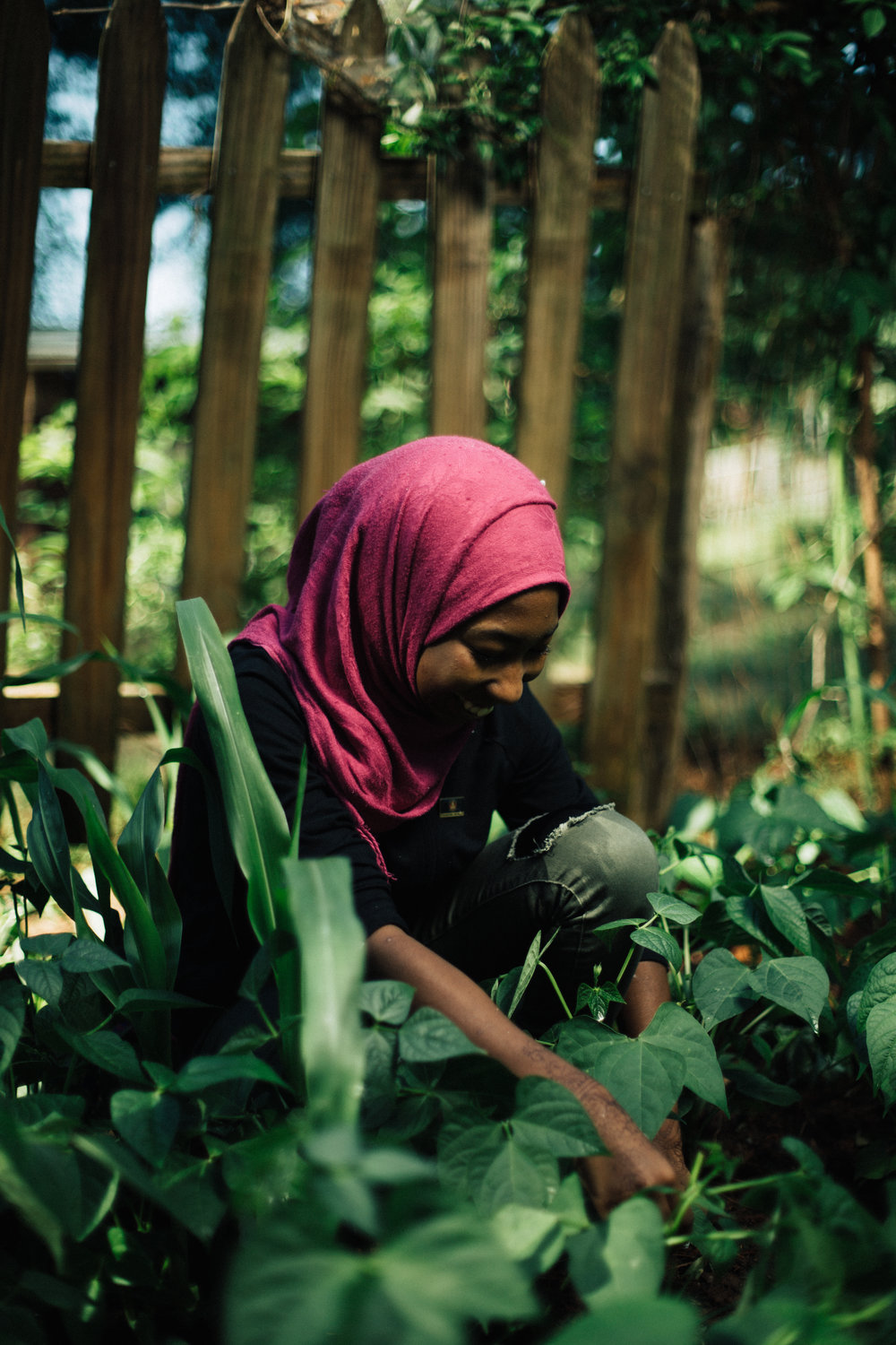 Our Mission - The Jolly Avenue Garden is a vibrant community gathering space that fosters our collective experience of beauty, belonging and friendship with the land and with one another. We seek to enrich the Clarkston community by offering growing spaces where refugee gardeners grow their own food to feed their families and friends; by facilitating educational opportunities for K-12 youth through agriculture programming, mentorship and employment, and STEAM curriculum initiatives; and by providing our friends in the programs access to healthy food and nutrition education through our Healthy Food Experience.