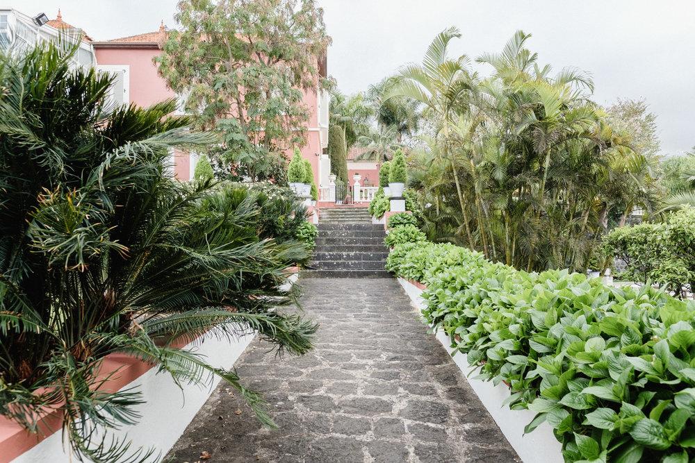Jardines de Franchy-14.jpg