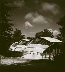 "The ""Downland Gridshell"""