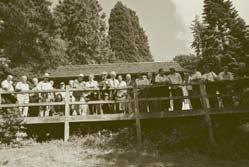 leighton-redwood-grove.jpg
