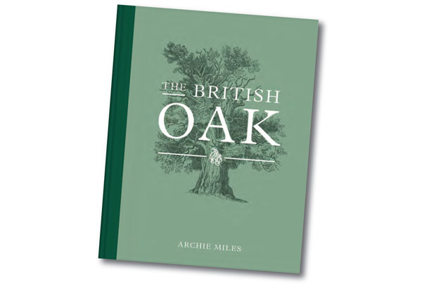 the_british_oak.jpg