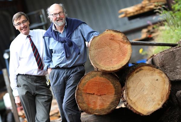 whitney-sawmills.jpg