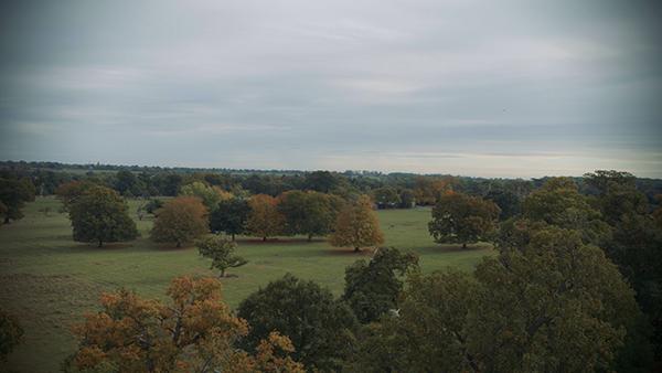 AOD film, aerial, landscape.jpg