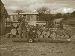 logging-arch-01.jpg