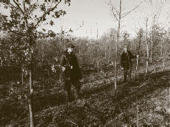 Chris Gagen (left) and Laurence mark the stumps where the red alders were felled