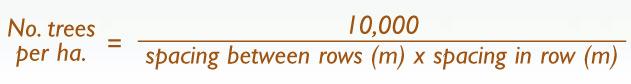 tree-planting-formula.jpg
