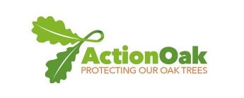 action-oak.jpg