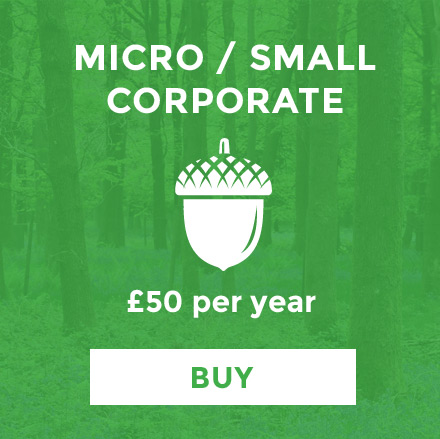 micro-corporate.jpg