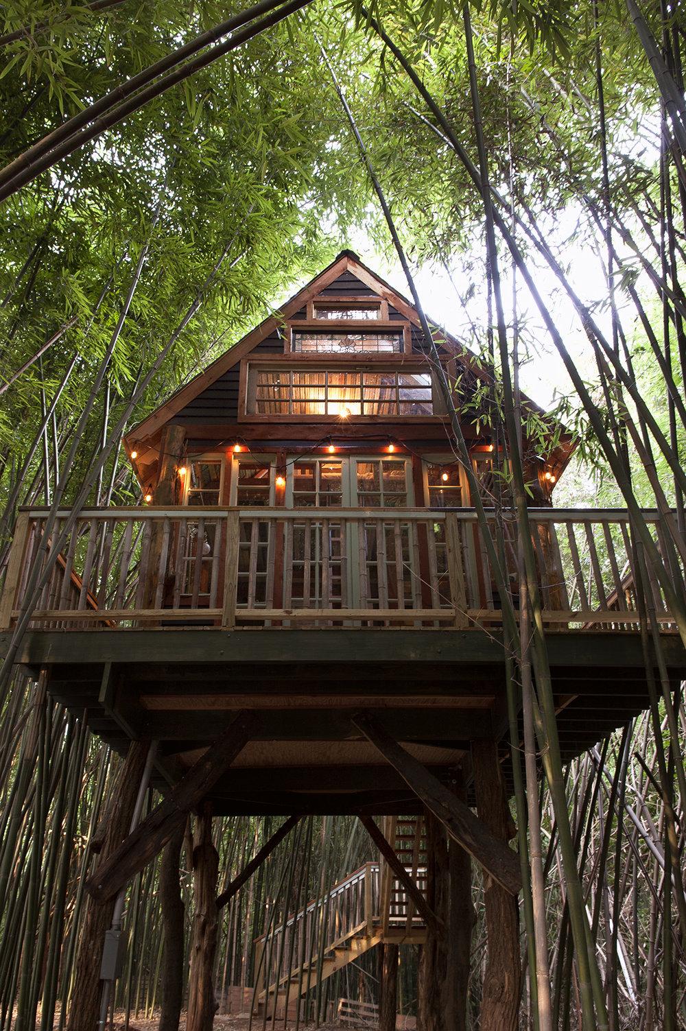 LindsayAppel-Treehouse-1