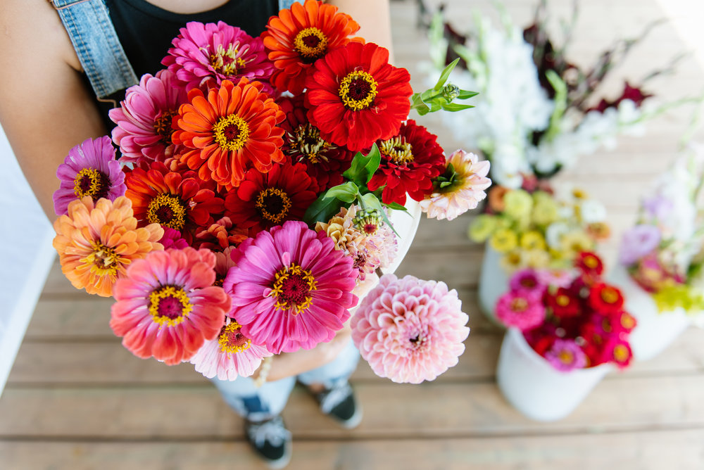 Join the club - Winter is long here in Alberta. You (and all the lovely humans in your life) deserve fresh, beautiful flowers all summer. Join our Fresh Cut Flower Club and we'll set you up with a weekly subscription to get a generous bouquet of our best flowers and foliage.