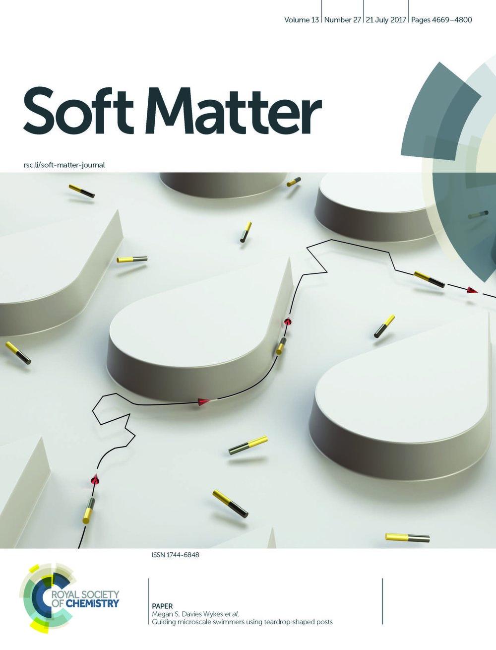 Wykes, et al. Soft Matter ,  2017 ,  13 , 4669-4800