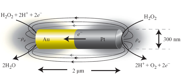 Electron flow generated from Au-Pt nanorod immersed in peroxide solution