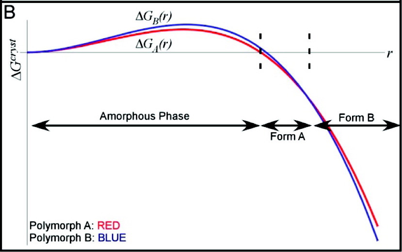 Illustration of the energetic profiles for two competing nuclei, polymorph A and polymorph B, over a range of characteristic lengths