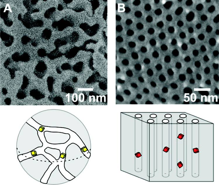 Nanoscale reactors. Controlled pore glass (left) and anodic aluminum oxide (right)