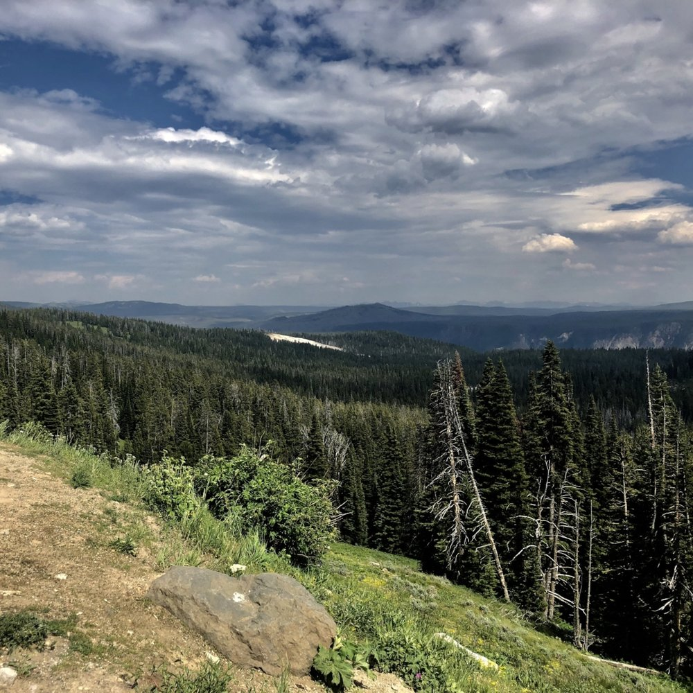 a view from mount washburn.