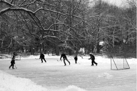 Ice hockey in Potter Wood