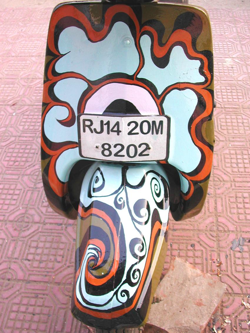 MeganWilson_Bikes_JaipurIndia_3.jpg