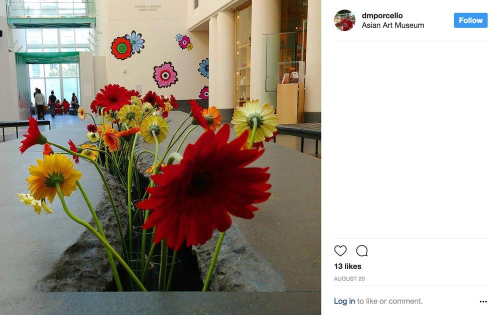 AAM_Instagram_SI_241.jpg