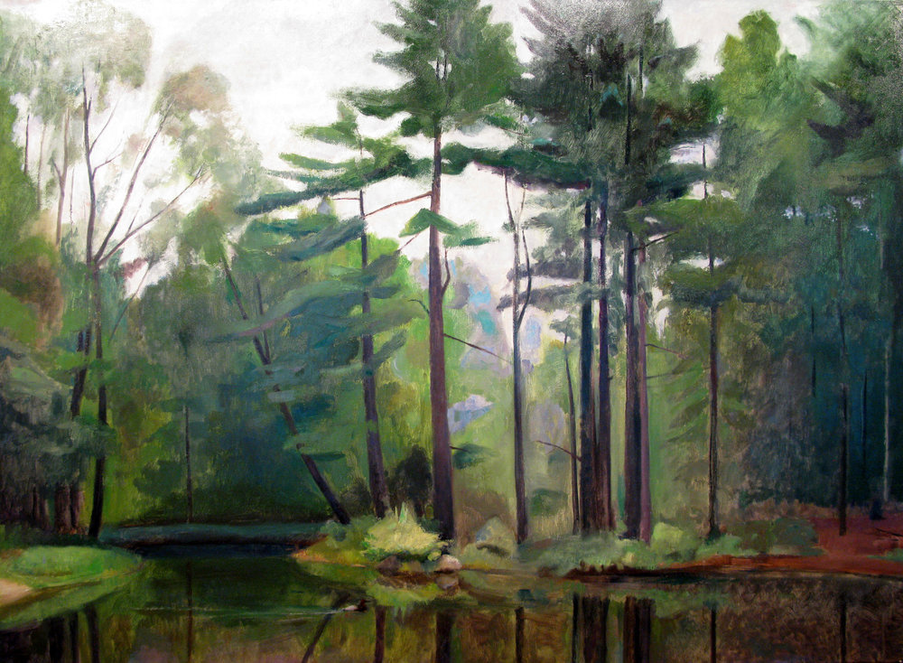 "Duck Pond, 44"" x 62"", oil on linen"