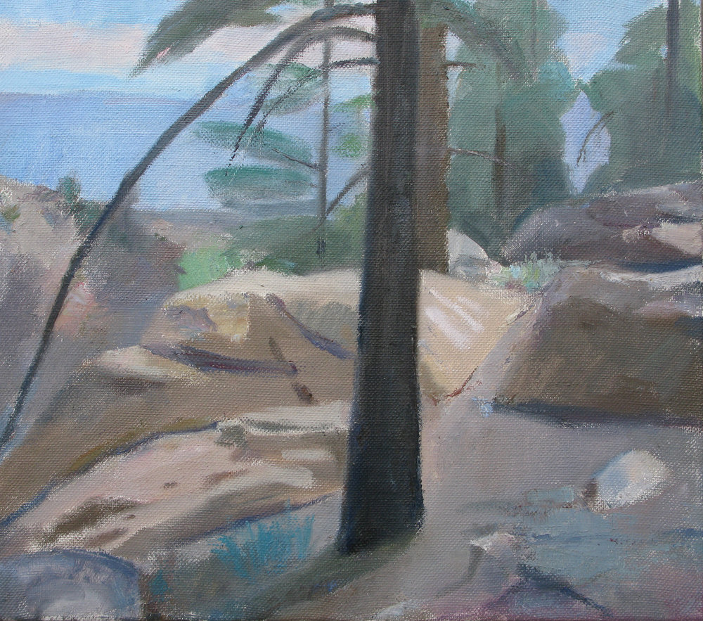 "Swall Meadows, Pines and Rocks, 19"" x 21"" , oil on linen"