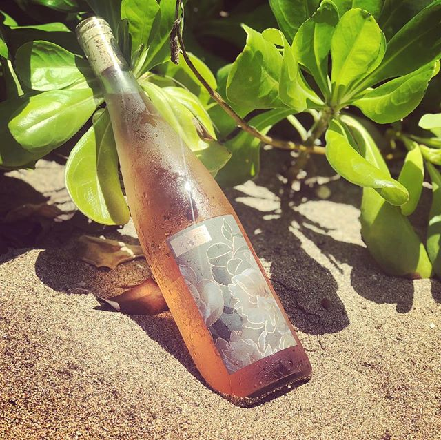 Life's better on a beach...with rosé. #ionrose #rosé #summerwater #roséwine