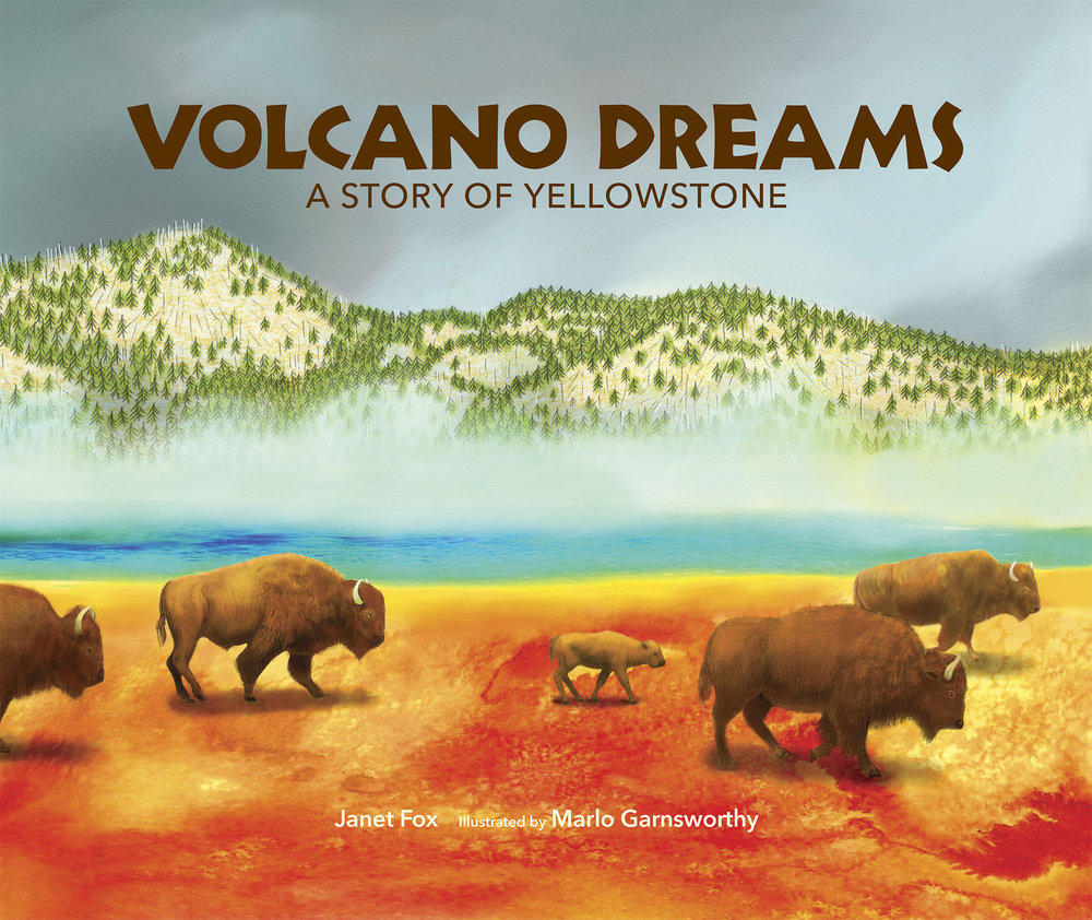 VOLCANO DREAMS—A Story of Yellowstone - By Janet Fox, Web of Life Children's Books, 2018Illustration and Sci-Art by Marlo