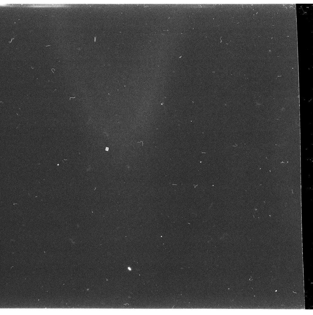 Ras-1.jpg
