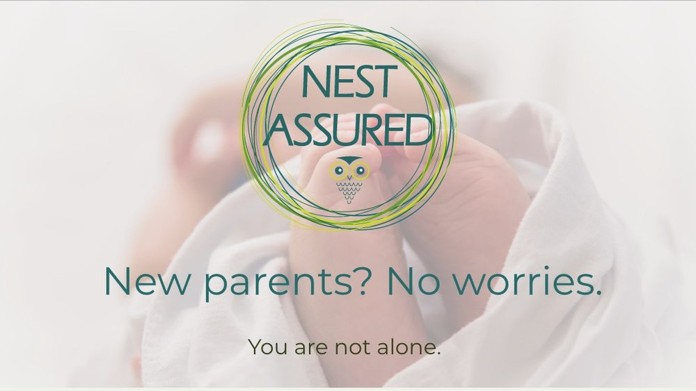 Nest Assured with Julie -