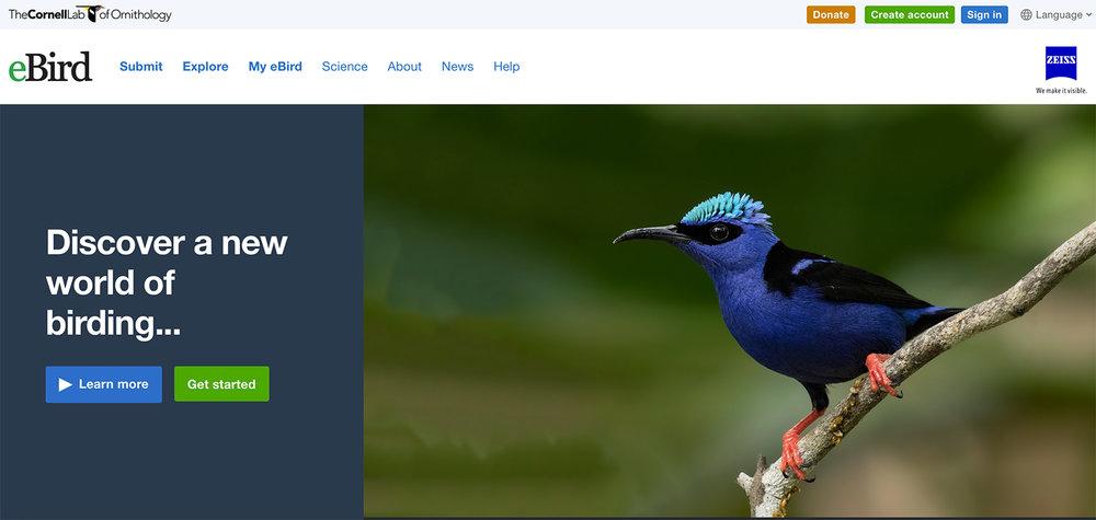 eBird Best Bird Finding App