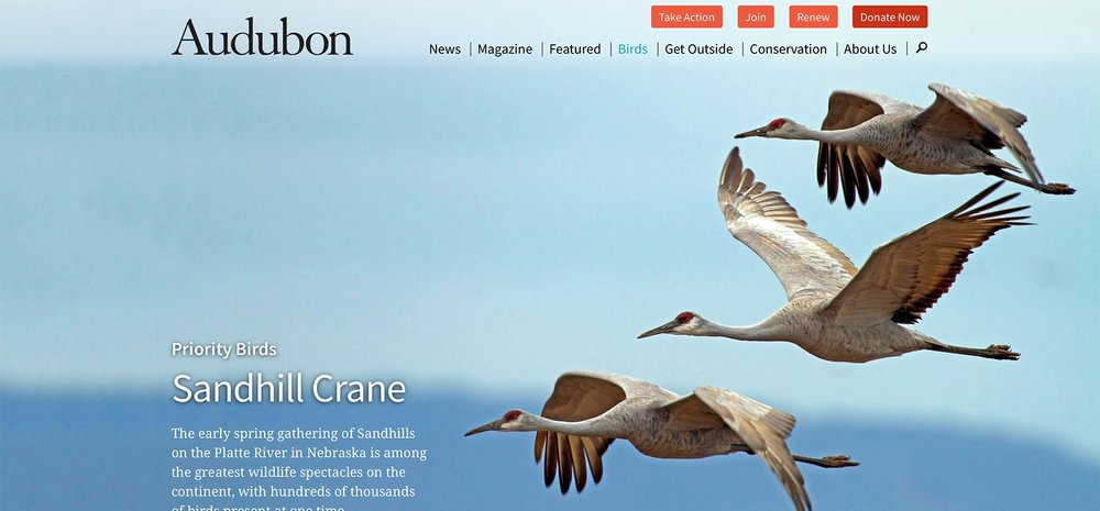 The Audubon Society For Great Places to Find Wildlife