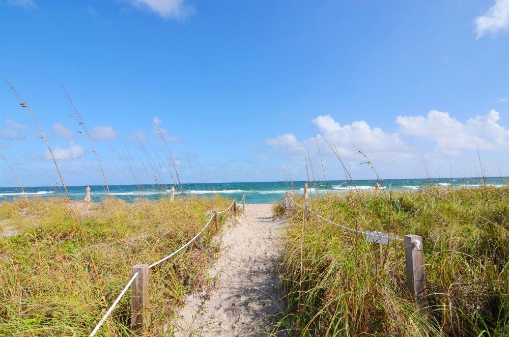 Palm Beach photogallery 7