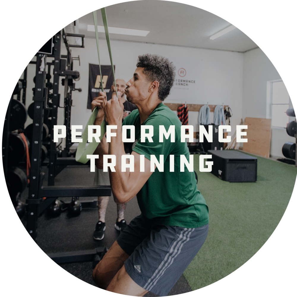 Performance_Training.png