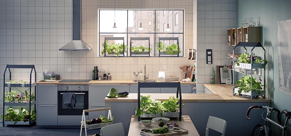 00_PH133383_IKEA_indoor_gardening.jpg