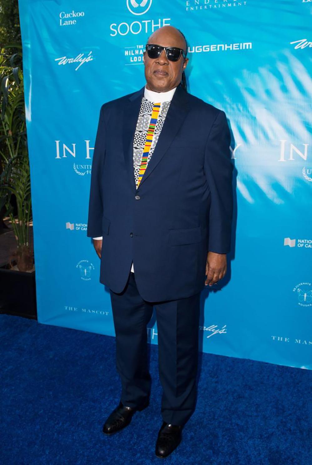 Stevie Wonder ©Emma Mcintyre, Getty Images