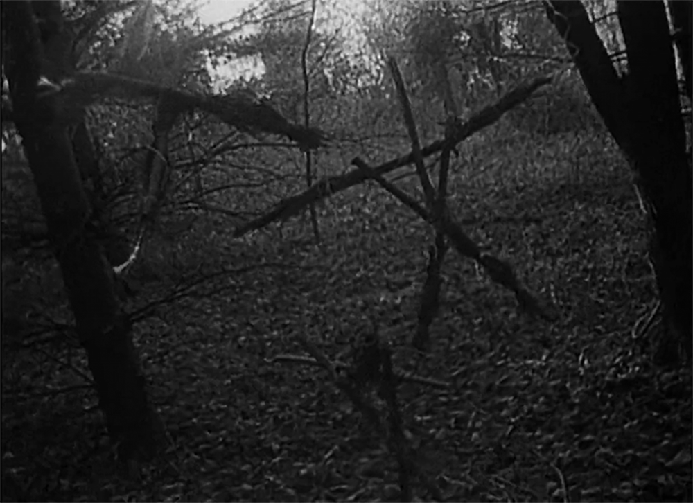 ' The Blair Witch Project '